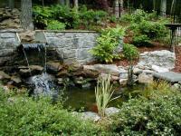 จัดสวนสวย น้ำที่อยู่ในสวน ด้วยบ่อเลี้ยงปลาคาร์ฟ