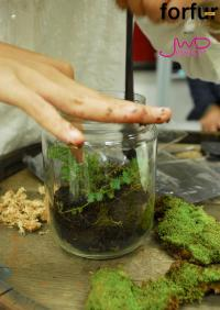 จัดสวนในขวดแก้ว จัดวางได้ตามใจ  เพื่มพื้นที่สีเขียวง่ายๆ