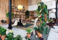 การจัดสวน ในบ้าน ออฟฟิศ บรรยากาศสวยๆ