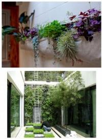 การจัดสวนในพื้นที่จำกัด ที่มีพื้นที่บ้านเล็กๆเช่น ทาวน์เฮ้าส์ หรือตึกแถว
