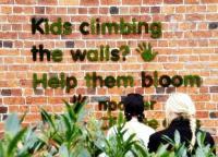 จัดสวนบนผนังแบบเด็กแนว ด้วย moss grafffiti