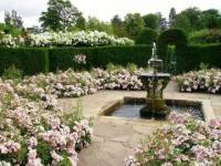 จัดสวน 9ไอเดีย ที่นั่งในสวนสวยคลายร้อน รับลมร้อน