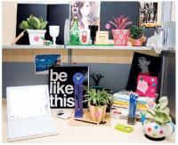 แต่งห้องทำงาน เลือกไม้ประดับควรมีบนโต๊ะทำงาน
